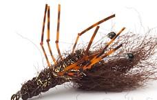 pf-honeyshrimp-dark-gr