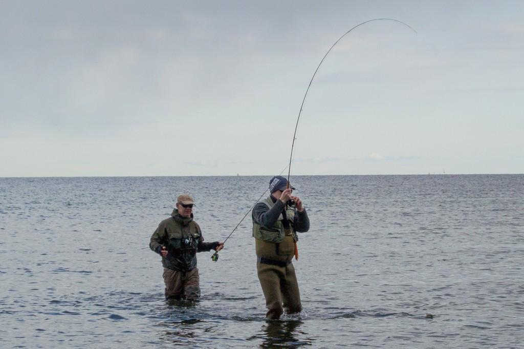 Havsöringsfiske web-1223 (2)